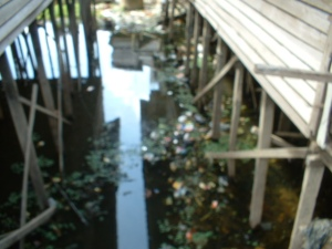 Sampah perumahan kampung kumuh Palangka Raya dan Sungai Kahayan.  Di Kalteng, sungai adalah nama lain dari tong sampah besar. (Foto. Dok. Lembaga Kebudayaan Dayak Kalimantan Tengah /Andriani S. Kusni, 2009]
